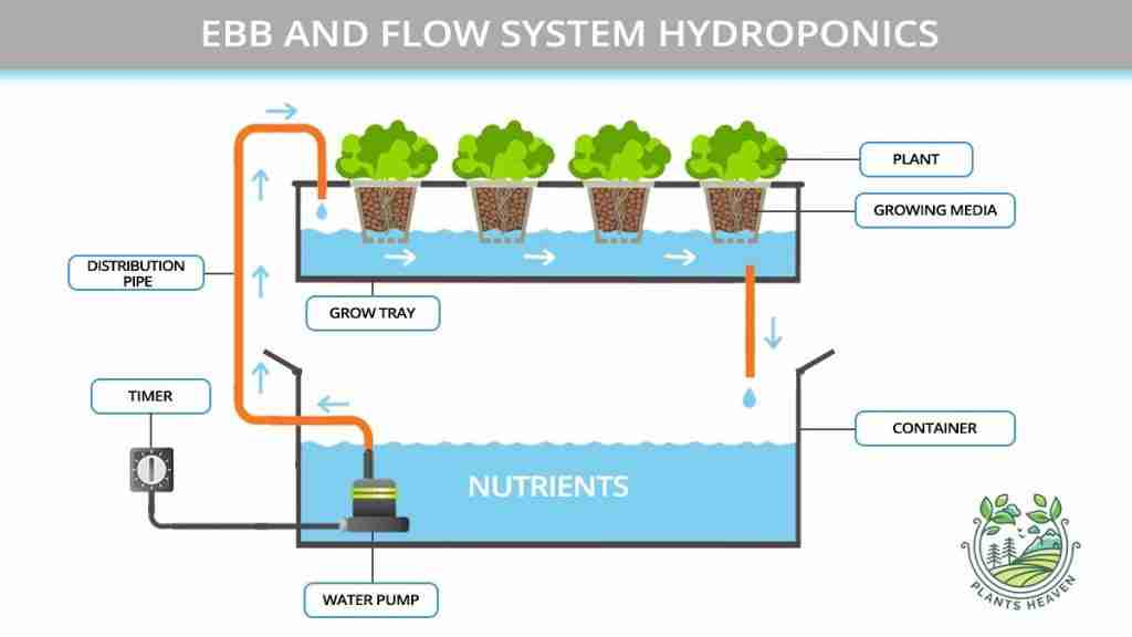Ebb and Flow System Pros and Cons