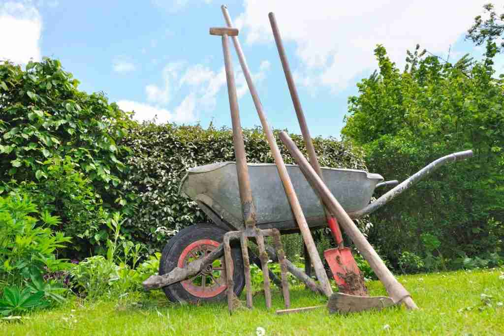 What Tools Do You Need to Start a Garden